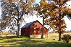 Grange rouge et arbres grands d'automne image stock