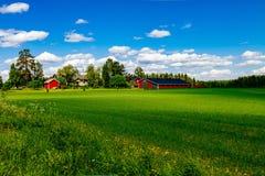 Grange rouge traditionnelle de maison de ferme avec l'équilibre blanc dans le pâturage ouvert avec le ciel bleu en Finlande Photo libre de droits