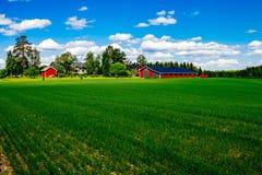 Grange rouge traditionnelle de maison de ferme avec l'équilibre blanc dans le pâturage ouvert avec le ciel bleu en Finlande Photographie stock libre de droits