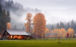 Granges dans le bois d'automne avec le brouillard Photo stock