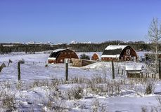Granges rouges en hiver images libres de droits