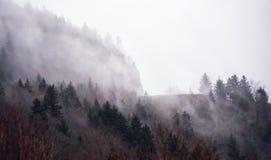 Grani błękitny Parkway, Pólnocna Karolina Fotografia Stock