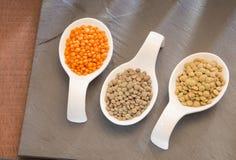 Grani crudi della lenticchia - lens culinaris Fotografia Stock Libera da Diritti