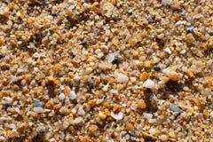 Grani del dettaglio della sabbia fotografia stock