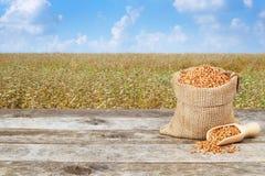 Grani del grano saraceno e giacimento del grano saraceno Fotografia Stock Libera da Diritti