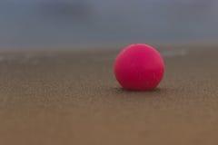 Grani della sabbia sulla perla rosa Immagine Stock