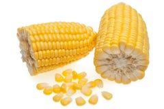 Grani di cereale isolati su bianco Fotografia Stock Libera da Diritti