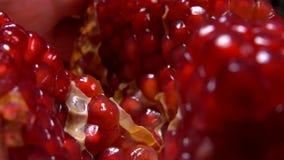 Grani di grande melograno rosso succoso video d archivio