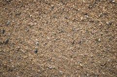 Grani di sabbia come fondo in sources1 d'acqua dolce naturale Immagini Stock