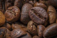 Grani enormi di caffè Fotografia Stock