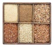 Grani liberi del glutine in scatola rustica Fotografie Stock Libere da Diritti