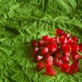 Grani maturi succosi rossi del melograno sul fondo del Libro Verde Fotografia Stock
