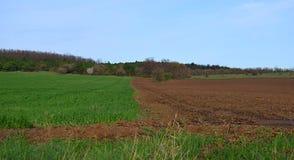 Granica grunt orny i pola z zieloną banatką zdjęcia stock