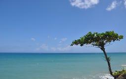 granica między niebem i oceanem Obraz Royalty Free
