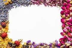 Granica zdrowi ziele i ziołowej herbaty asortyment na bielu Obrazy Royalty Free