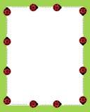 granicy obramiają ladybirds Obrazy Royalty Free