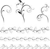 graniczy dekoracyjnych elementów kwiecistego set Zdjęcie Stock