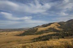 Granie i kolor żółty równiny zbliżają Mt Washburn w Yellowstone, Wyomi fotografia royalty free