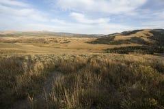 Granie i kolor żółty równiny zbliżają Mt Washburn w Yellowstone, Wyomi obrazy royalty free