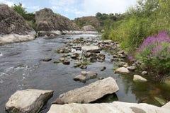 Graniet en basaltrotsvormingen en heldergroene vegetatie met een bloeiende struik op de banken van het snelle rivier Zuidelijke I Royalty-vrije Stock Afbeelding