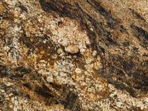 Graniet en marmeren background3 Royalty-vrije Stock Foto's