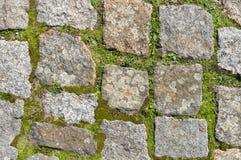 Graniet en mos. Royalty-vrije Stock Afbeelding
