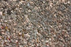 Granietoppervlakte met mos wordt overwoekerd dat Royalty-vrije Stock Fotografie