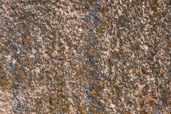 Granietoppervlakte met mos wordt overwoekerd dat Royalty-vrije Stock Foto's