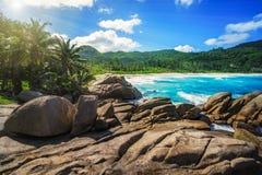 Granietrotsen, palmen, wild paradijs tropisch strand, sey politiebaai, royalty-vrije stock fotografie