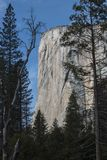 Granit Cliff Rises Above Yosemite EL Capitan in Kalifornien stockbild