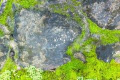 Granit extérieur abstrait en pierre sans couture gris de conception Photos stock
