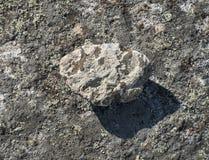 Granit-Kiesel und Schatten, Adirondack-Berge von New York Stockbilder