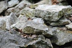 Granit-Marmor Wand Felsen mit Moos stock abbildung