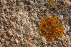 Granit mit Formen Stockbilder