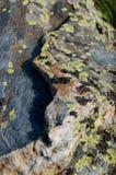 Granit- och marmorsten arkivbilder
