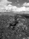 Granit, ryggsäck och Poles ovanför den Colorado timberlinen Arkivfoto