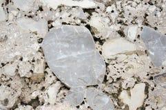 Granit stenbakgrund Royaltyfria Bilder