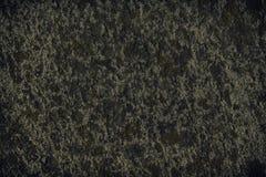 Granit vaggar closeupbakgrund, stentextur, knäckt yttersida Arkivbilder