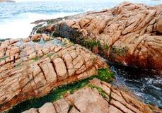 Granit vaggar och alger i Shek nolla-kust i Hong Kong royaltyfria bilder