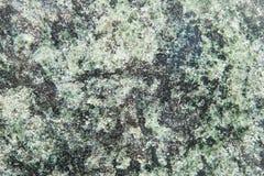 Granit vert Photographie stock