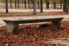 Granitbänk i parkera Arkivbilder