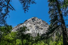 Granitbergframsida som igenom ses sörjaträden i konungkanjonnationalpark royaltyfri foto