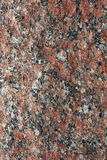 Granite background. Vertical. Stock Image