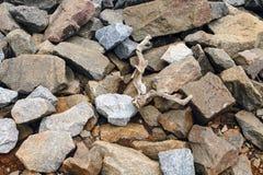 Granite Boulders And Driftwood Pile. Granite boulders and some driftwood piled up on the ground Stock Photo
