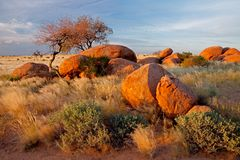 Granite boulders and trees Stock Photos