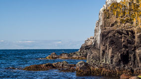 Granite cliff sides of the northern part of Bornholm Stock Photo
