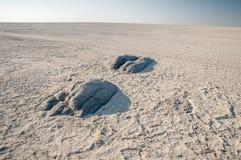 Granite extrusions inside Makgadikgadi Salt Pan. Stock Image