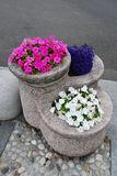 Granite flower pot Stock Photo