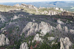 Granite formations in the Black Hills Stock Photo