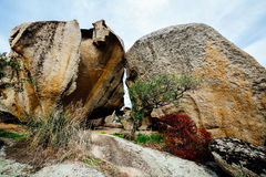 Granite garden. In Arzachena, Sardinia, Italy Royalty Free Stock Photos